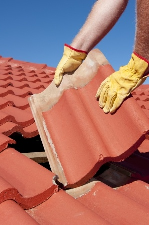 Repair or replace roof shingles